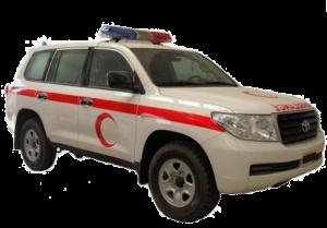 Toyota Land Cruiser G9