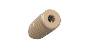 Interference Screw