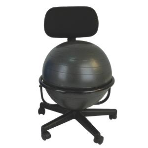 """CanDo® metal ball chair includes a 45 cm inflatable exercise ball and chair base. The mobile ergonomic seating systems combine the benefits of ball therapy with the convenience of a chair base. Ball held securely in place by the base. Casters glide on carpet or hard surfaces. Light assembly required. The metal ball chair is available with our without arms. Locking casters sold separately. Metal - Mobile - with Back - no Arms - with 18"""" Ball"""