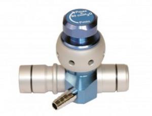 Reusable expiratory valves