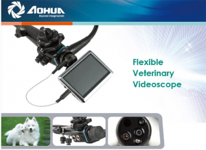 Veterinary Endoscope