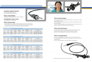 fiber endoscope