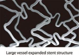 Tango™ Cobalt Chromium Coronary Stent System