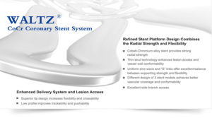 WALTZ CoCr Corornary Stent System