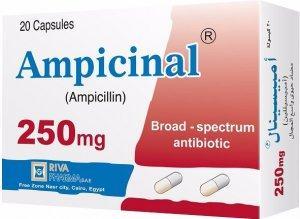 Ampicinal® 250 Caps