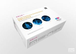 Fungal fluorescence staining solution