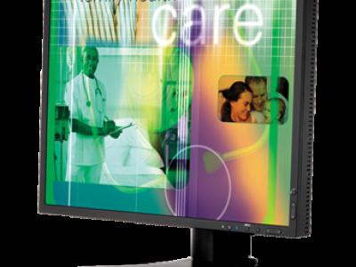 NEC LCD1990SXi 19 Inch Color-Critical Desktop Monitor
