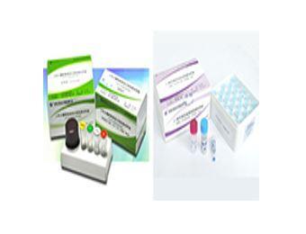 Fosun Diagnostics Genotyping Platform