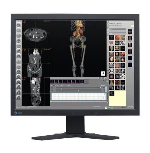 Eizo R22BK (R22-BK) Color LCD Display