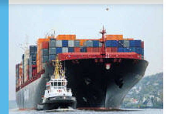 Our Seafreight services