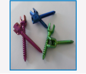 Polyaxial Pedicle Screw