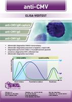 Human cytomegalovirus - CMV