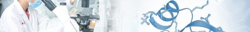 ELISA/CLIA- Fapon Biotech Inc.