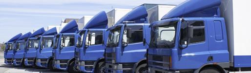 Transportation & Logistics - Cushman & Wakefield