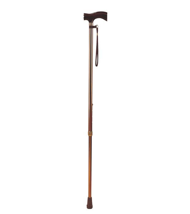 FS9306L  Walking stick