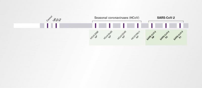EUROLINE Anti-SARS-CoV-2 Profile (IgG)