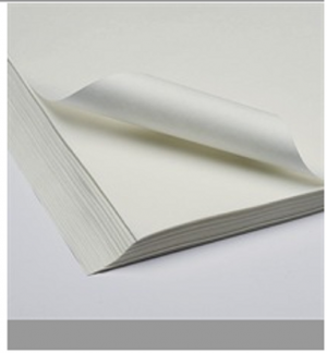 Paper absorbing paper