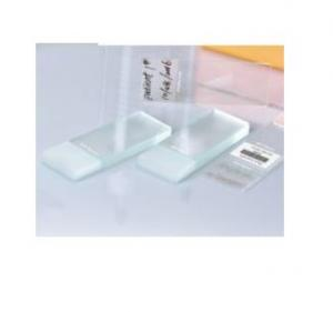 Single Frosted Microscope Slide