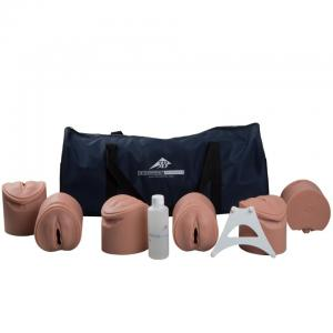3B Birthing Stages Trainer