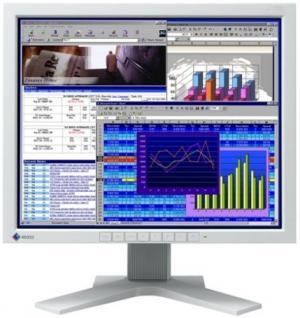 EIZO FlexScan L685 18.1 Inch  Display Monitor Solution