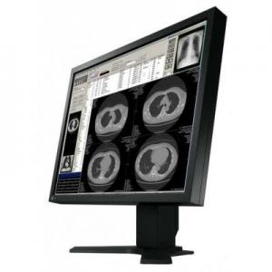 Eizo FlexScan S2100 21.3 Inch LCD Monitor