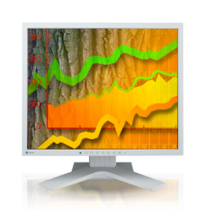 EIZO FlexScan S1903 19 inch LCD Monitor