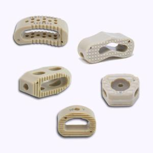 Peek Cages for Spine