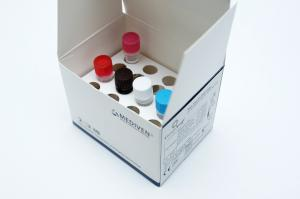 GenoAmp® Real-Time RT-PCR Chiku