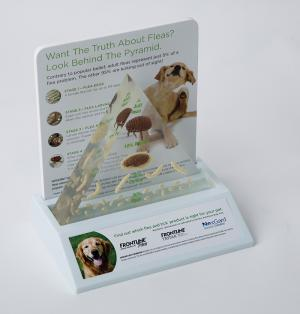Dog Flea Model