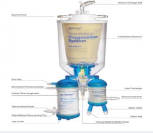 Membrane Oxygenation System