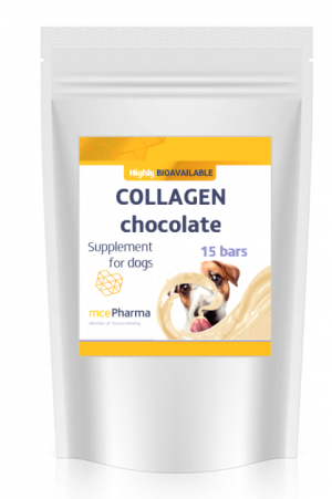 Chocolate for dog