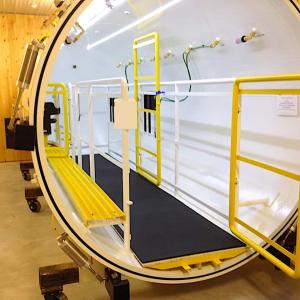 Hyperbaric Chambers for treating small and big animals from cats to camels