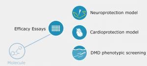 ZeEfficacy - Zeclinics Testing drug efficacy using disease models