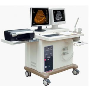 Human B/W Ultrasound Scanner - Xuzhou Palmary Electronics Co., Ltd