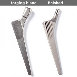 Hip Stems (sterile packed or forging blanc) › Aristotech