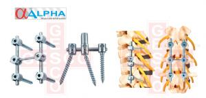 ALPHA - POSTERIOR ANTERIOR SPINAL SYSTEM
