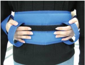 Transfer Belt
