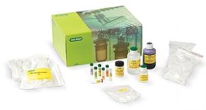 PCR Amplification Kits | Life Science Education | Bio-Rad