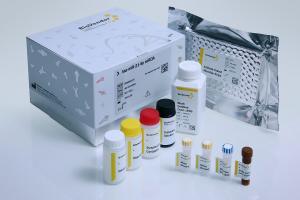 sa-miR-142-5p miREIA (microRNA, miRNA)
