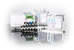 GeneFinder™ HLA-ABCDRB1DQ RealAmp Kit  - Molecular Diagnosis – OSANG Healthcare