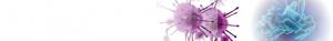 SERION ELISA classic : Gastrointestinal diseases