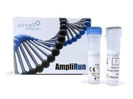 AMPLIRUN® MYCOBACTERIUM DNA CONTROL - Vircell