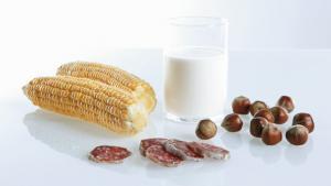 Food Safety Testing - QIAGEN
