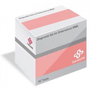 Diagnostic Kit for Enterovirus RNA (PCR-Fluorescence Probing) SANSURE   Advanced Molecule Diagnosis Solutions