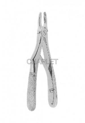 Extracting Forceps - Extracting Forceps - Dental