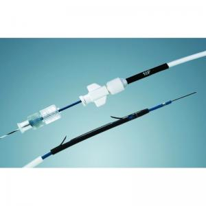 10.0F PSI - Biliary stent delivery system