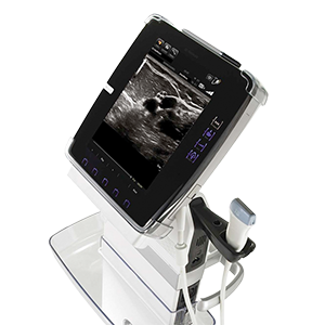 Portable Ultrasound Machines - KPI Healthcare