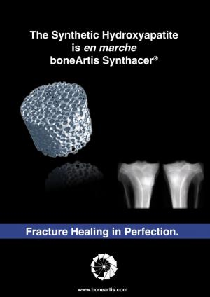 Synthacer®. Fracture Healing in Perfection