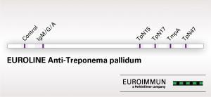 EUROLINE Anti-Treponema pallidum