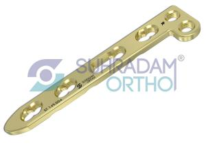2.7mm LCP L Dorsal Distal Radius Plate [02 hole head]
